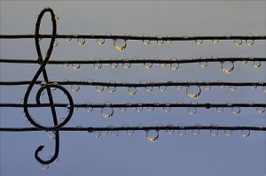 drop-inspiration-music-nature-note-water-Favim.com-41065