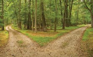 choice-roads