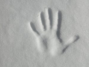 handprint (1)