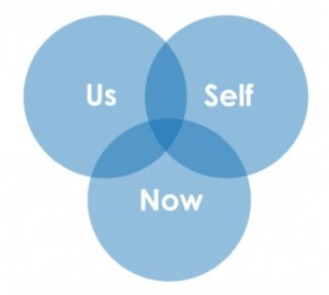 self-us-now-venn