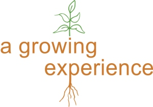 A-growing-experience